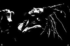 New King of Dreads Bob Marley Poster