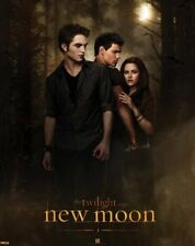 New Bella with Edward and Jacob Who will she choose Twilight Saga Mini Poster