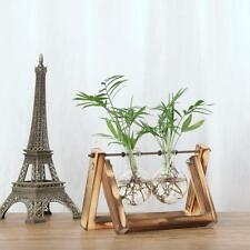 Vintage Style Glass Tabletop Plant Bonsai Flower Home Decorative Vase with Tray