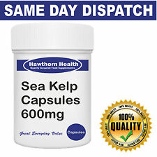 Sea Kelp - 600mg One A Day Capsules - Hawthorn Health Vitamins & Supplements
