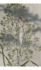 AMELIA JANE MURRAY Fairy Standing Among Grass ON CANVAS various SIZES, BRAND NEW