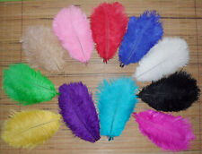 Wholesale Natural OSTRICH FEATHERS 8-10'inch 12 kinds Color Selection