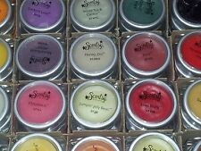 "SCENTSY LARGE (2X2"") TESTERS (weigh 1.3 0z.)  A-M  Lots of Choice"