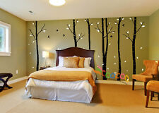 """Wall Decor Decal Sticker Removable 96""""  birch bird tree 2 colors DC0202 6 trees"""