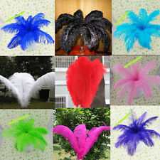 Free shipping wholesale 10-200pcs Pretty  ostrich feathers 14-16inch / 35-40cm