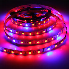 4:1 5:1 5050 Grow LED Strip Light Aquarium Greenhouse Hydroponic Plant 12V 12W