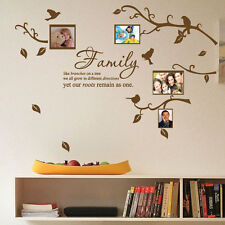 Family Tree Bird Photo Frame Nursery Art Wall Stickers Quotes Wall Decals Deco b