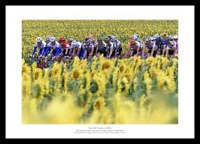 Tour de France Peloton 'Sunflower Field' Cycling Photo Memorabilia (952)