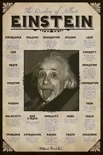 New The Wisdom of Albert Einstein Albert Einstein Poster