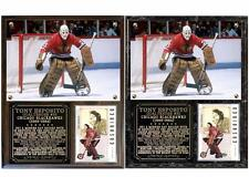 Tony Esposito #35 Chicago Blackhawks Photo Card Plaque Hall of Fame