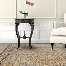 Ivory Beige Oriental Area Rug Traditional Persian Bordered Carpet Rugs Area Rugs