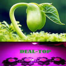 High Power 3W full spectrum 400nm-840nm LED Bead Grow Plant light with 20mm Base