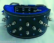 Black Leather & Blue Studded Suede Dog Collar with Crystals & Nickel Fittings