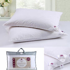4 X LUXURY DUCK FEATHER HOTEL QUALITY PILLOWS DICKENS BRAND **LIMITED OFFER**