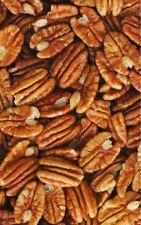 Georgia PECANS Fancy Jr Mammoth Pecan HALVES Raw Shelled Choose Bulk Nuts