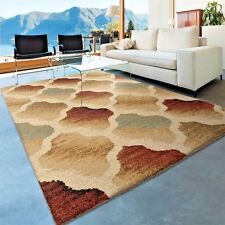 RUGS AREA RUGS 8x10 AREA RUG CARPETS LARGE RUGS 5x8 MODERN RUG SHAG RUGS NEW  ~