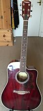 Westfield b200 dreadnought acoustic guitar with case, stand, plectrums and book