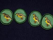 Vintage Girl Scout Green Background  BADGES- 4 yellow birds