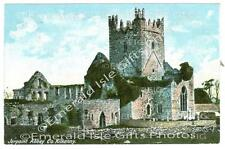 Kilkenny Jerpoint Abbey Old colour Irish Photo Size Selectable