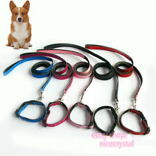 Pet Collar with 1.2M lead For Dog Cat Puppy Personalized Collar DIY Crystal Name