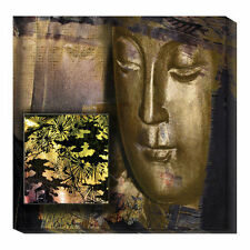 Global Gallery Organza by Suzanne Silk Graphic Art Print on Canvas