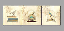 3pcs Birds Nest Canvas Print Painting Picture Decor Wall Art Abstract Frame 359