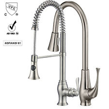 Ollieroo Kitchen Sink Faucet Single Handle Kitchen Faucet Pull Out with Sprayer