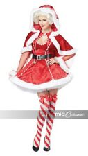 California Costumes Sexy Mrs. Claus Adult Womens Xmas Christmas Costume 01558