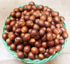 Whole Nutmeg Premium Quality From Malaysia Organic Herbs & Spices Free Shipping