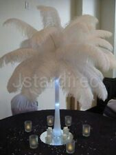 20 PCS WHITE OSTRICH FEATHERS 25-40 CM 10-16 INCH LONG USA SHIP WITHIN 24 HOURS