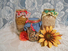 NEW Homemade Quick Bread Mix In A Quart Jar 25+ Varieties You Choose Flavor Gift