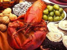 PHOTO FOOD LOBSTER OYSTER WALNUT SEED POSTER ART PRINT PICTURE