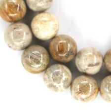 NATURAL Fossil Coral Round Beads VARIOUS SIZES 8, 10, 12, 14, 16, 18mm