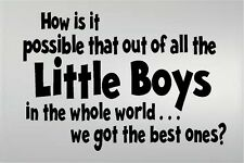 HOW IS IT POSSIBLE LITTLE BOYS WE GOT THE BEST ONES VINYL DECAL KIDS ROOM BOYS