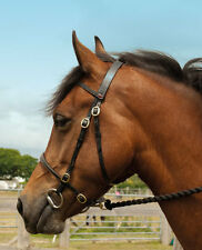 Leather In-Hand Show Bridle By Windsor Equestrian All Sizes- Black & Havana