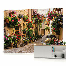 Cobbled Street with Flowers Photo Wallpaper Wall Mural (CN-1339VE)