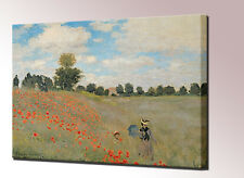 Wild Poppies Near Argenteuil by Claude Monet - High Quality Canvas Print