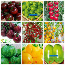 32Variety Tomato Seeds Black Sweet Cherry Fruit Vegetable Organic Heirloom Fresh