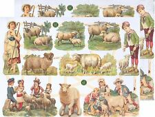 Chromo EF - Décroupis Berger Moutons  - Shepherds Sheeps N° 7405