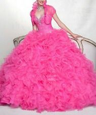Hot Elegant Quinceanera Dress Pageant Dress Prom Ball Bridal gowns Custom Size