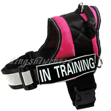 Service Dog Vest Reflective Padded Velcro Patchs IN TRAINING THERAPY DOG Harness