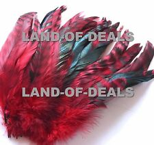 RED Rooster tail feathers chinchilla coque feathers, strung bulk wholesale long