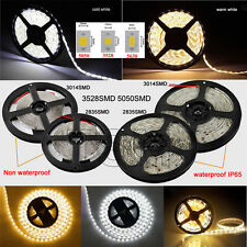 STRISCIA A LED SMD 5050 3528 5630 3014 300LED 5M STRIP Warm/Cool BOBINA LUCE 12V