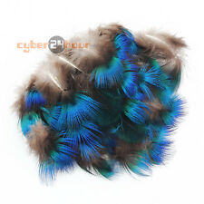 """50pcs DIY Pheasant Plumage feathers Peacock Blue 1""""-3"""" for Hat Trimmings Wedding"""