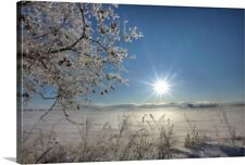 Premium Thick-Wrap Canvas Wall Art entitled Frost Covered Trees On Winter