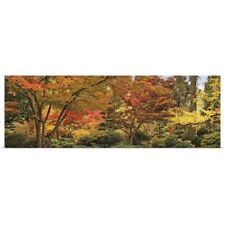 Poster Print Wall Art entitled Trees in a forest, Ashland, Jackson County,
