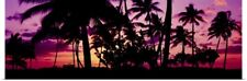 Poster Print Wall Art entitled Silhouette of palm trees at sunset, Ko Olina,