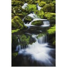 Poster Print Wall Art entitled Great Smoky Mountains National Park, Tennessee
