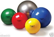 Thera-Band Standard Series Exercise Ball