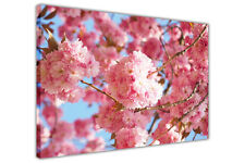 Pink Cherry Blossom on Framed Canvas Wall Art Pictures Floral Prints Home Deco